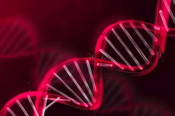генетическое консультирование